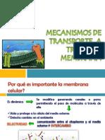 TRANSPORTE  A Través DE MEMBRANA[1]
