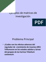 11- Matriz Dz Consistencia Ppt