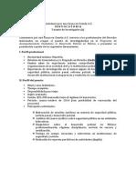Convocatoria Investigador (1)