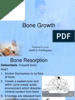 Bone Growth in Oral Physiology