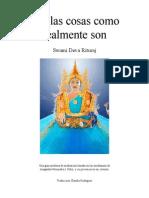 Ver las cosas como realmente son. Swami Deva Rituraj.pdf