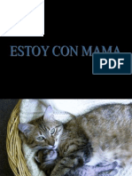 Mamayyons