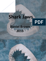 Shark Jaws Photo Guide