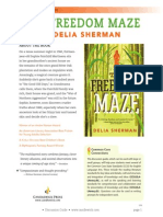 The Freedom Maze Discussion Guide