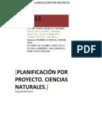 PLANIFICACIÓN POR PROYECTO PDF