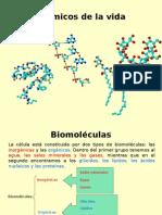 Componentes químicos intracelulares