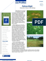 Turfgrass Disease Profiles