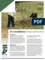 Tree Planting Details Process