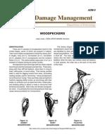 Animal Damage Management