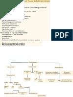 AlteracionesHidroelectroliticas