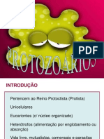 Protozoarios Aula