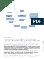 sistema endocrino grupal