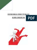 Accesare Fonduri Structurale - Cap4
