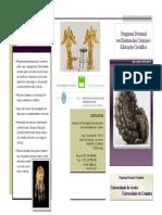 Programa Doutoral.pdf