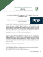 Arbóreas APA Cafuringa DF - Sobreira et al 2010