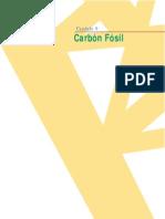 Capítulo 9 Carbon Fósil