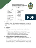 Silabo Fisiologia Vegetal 2013-II