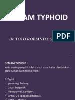 Demam Typhoid