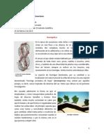 Emiro_Fábula_Investigación