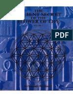 Drunvalo-Melchizedek-Ancient-Secret-of-the-Flower-of-Life-Vol2.pdf