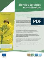 Bienes y servicios ecosistémicos