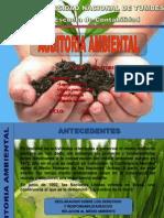 Auditoria Ambiental(Trabajo)Corregido