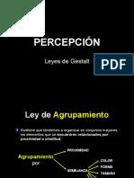 PERCPCIÓN -MORFOLOGIA 2