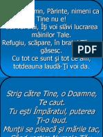 Al Meu Domn, Parinte-3