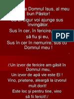 Am Ales Pe Domnul Isus-4