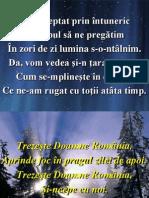 Am Asteptat Prin Int.(Trezeste Romania)