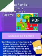 Estudio de Familia - Instrumentos