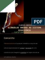 Histologia Médica 4ª Aula Anexas