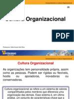 8  Comportamento e cultura Cultura(1).pdf