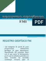 registros geofisicos FMI
