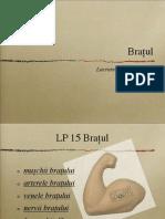 Lp15 Bratul