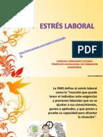 Exposicion de Estress Laboral