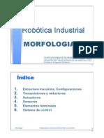 Tema 2 Morfologia Est