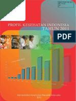Profil Kesehatan 2011