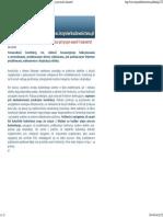 Inżynier Budownictwa - Konstrukcje z drewna klejonego - analiza przyczyn awarii i katastrof