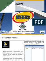 01 Template de Navegação Básica_SAP vfinal