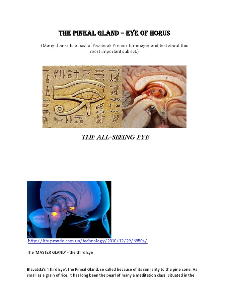 The Pineal Gland the Eye of Horus Part 1 | Michelangelo | Chakra
