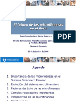 Futuro de Las MicrofinanzasVF