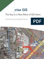 Enterprise GIS