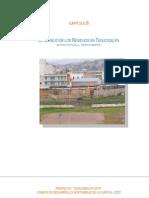 Capitulo 8- El Manejo de Los Residuos en Tegucigalpa