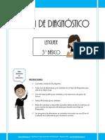3) Prueba de Diagnostico Lenguaje 3basico 2013