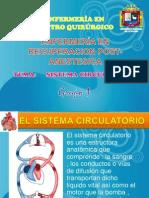 Sistema Circulatorio Unap
