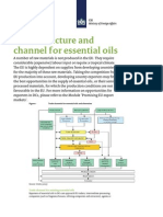 Trade Structure and Channel for Essential Oils