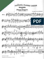 Strauss Il bel Danubio blu