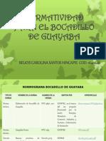 Normatividad Para El Bocadillo de Guayaba