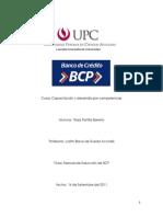 Manual Bcp
